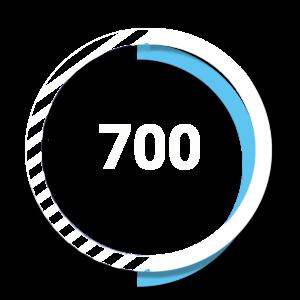 700 partner - Online Digital Tool System